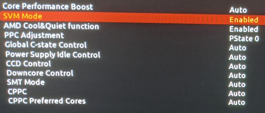 AMD SVM